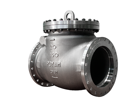 09-cryogenic-bolted-bonnet-swing-check-valve