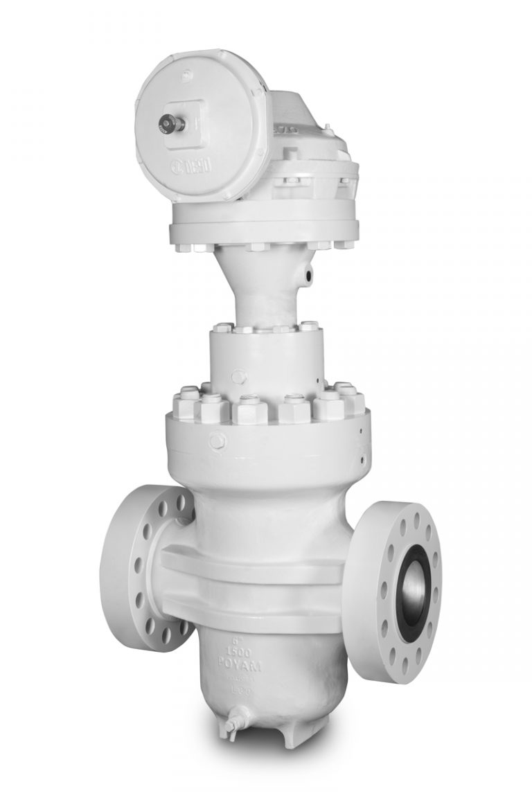 AMPO POYAM VALVES Through Conduit Gate Valve